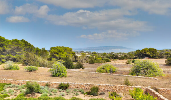 land for sale formentera